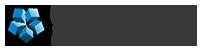Leeuwenkamp & Van der Velden Logo